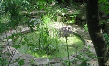 le jardin du thé